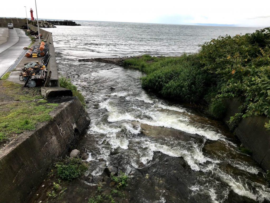 別苅漁港のサケ釣り