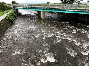 箸別川のサケ釣り