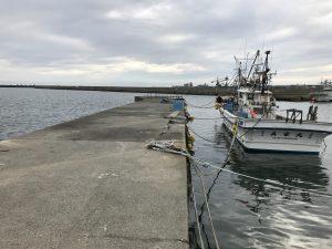苫小牧パトロール(浜厚真漁港)