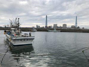 苫小牧 浜厚真漁港 (動画つき)釣り場