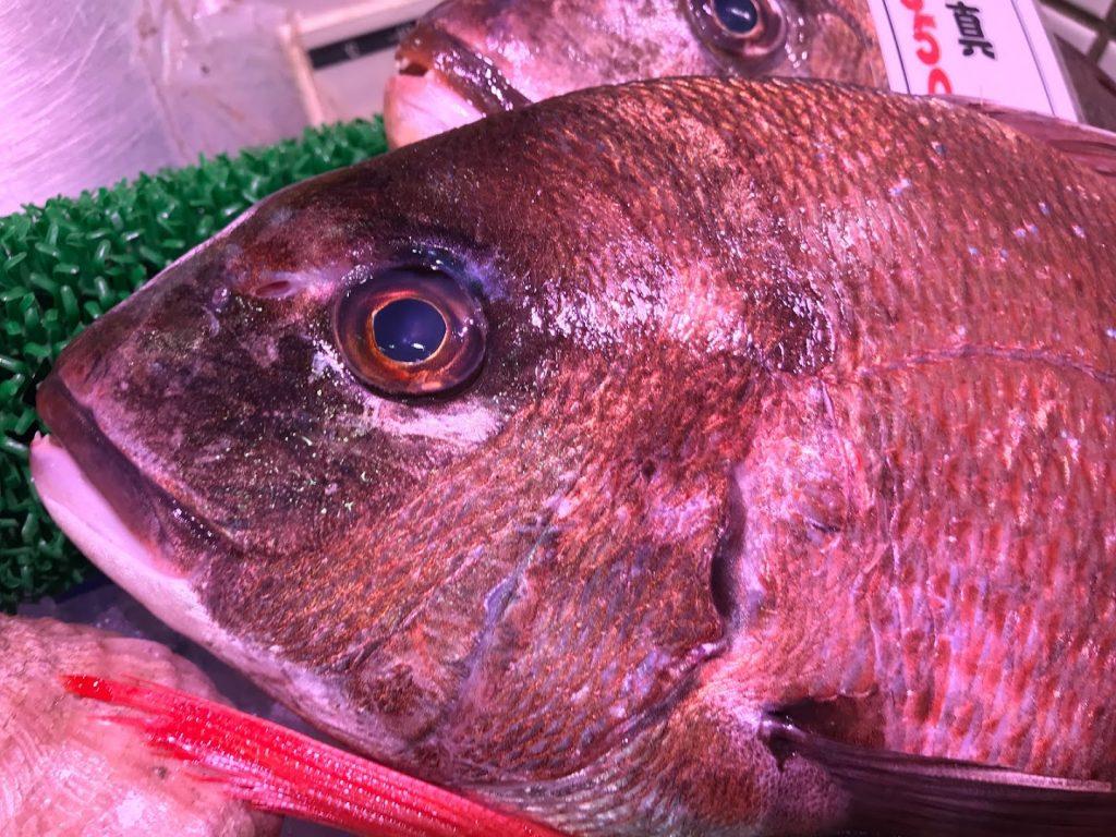 北海道のあそこであの魚が上がる!!温暖化か!?