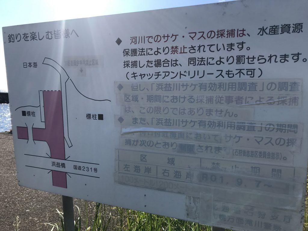 浜益川 サケ有効利用調査 河口規制