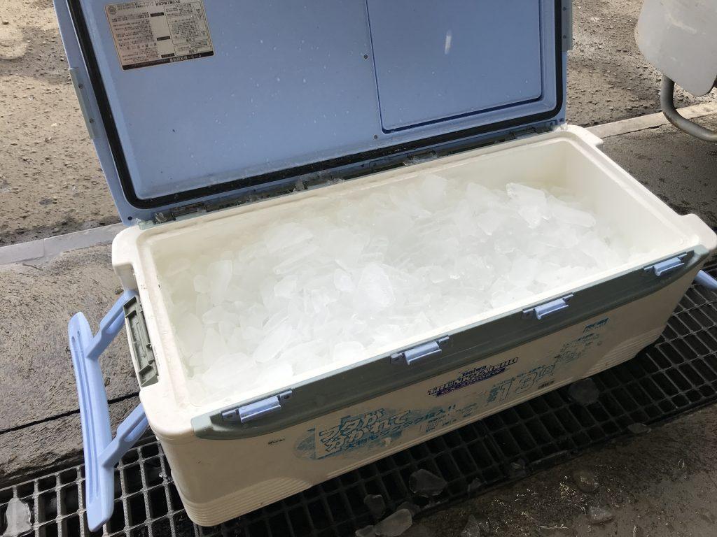 ブリ釣り用の氷確保問題ー最終回答見つける 氷やの橘さん 24時間氷自販機